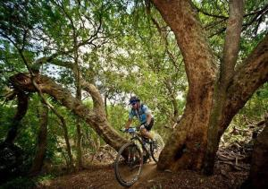 Scenery from the 947 Mountain Bike Challenge