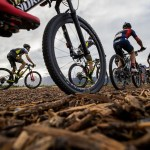 Riders during the final stage of this year's Cape Epic