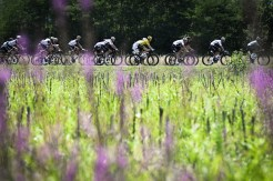 The peloton in action on stage 18 of the Tour de France