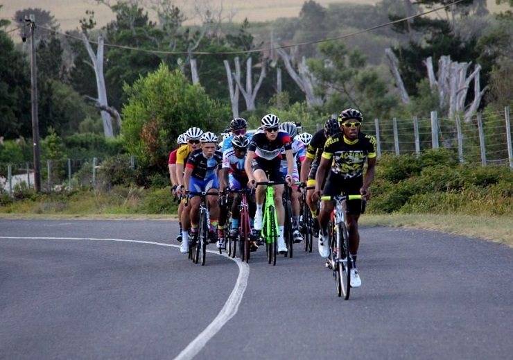 A bunch of riders in action during the Festival of Cycling road race in Port Elizabeth last week. Photo: East Cape Road Cycling