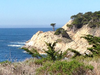 Lone Cypress Tree, Point Lobos Reserve, CA