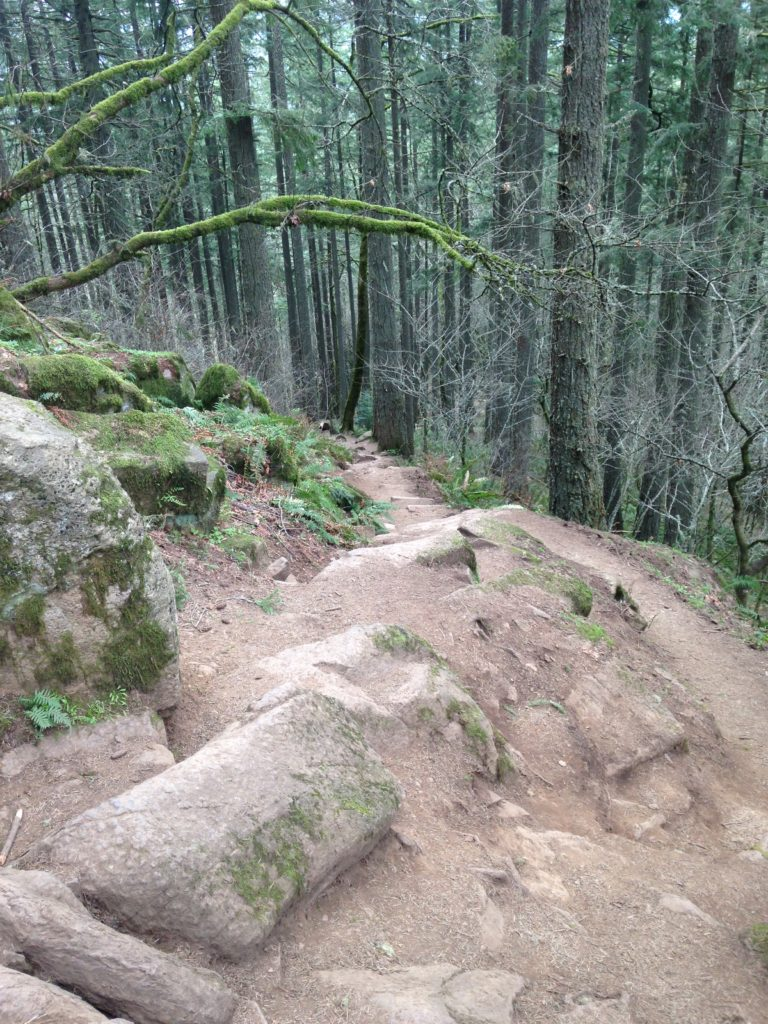Descending Spencer Butte trail