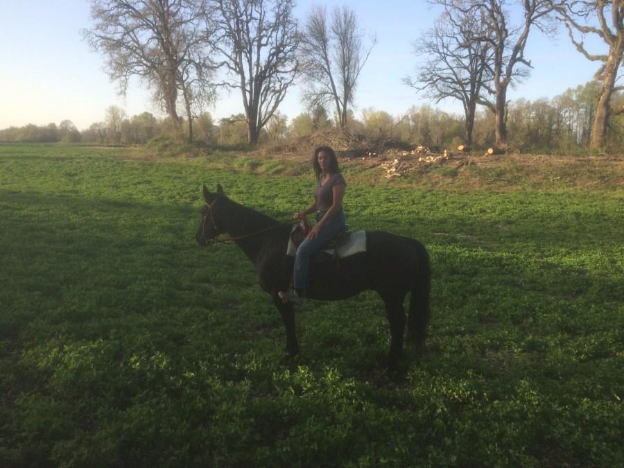 Horseback riding Savoie Island