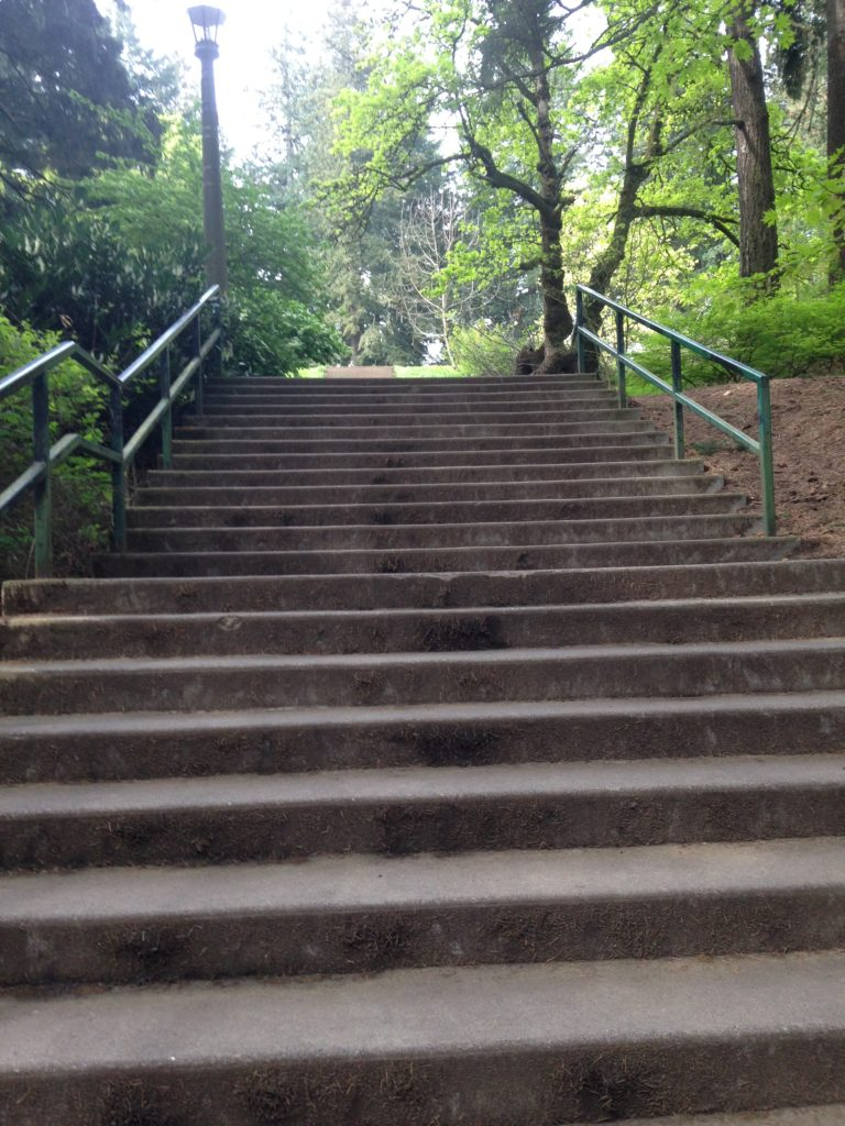Stairs Mt Tabor Park