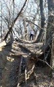 Barb looks down a steep portion of Potawatomi Trail at McNaughton Park in Pekin, Ill.