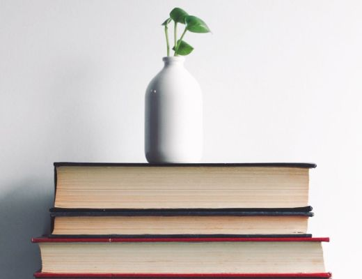 stack of books with white vase with plant on top