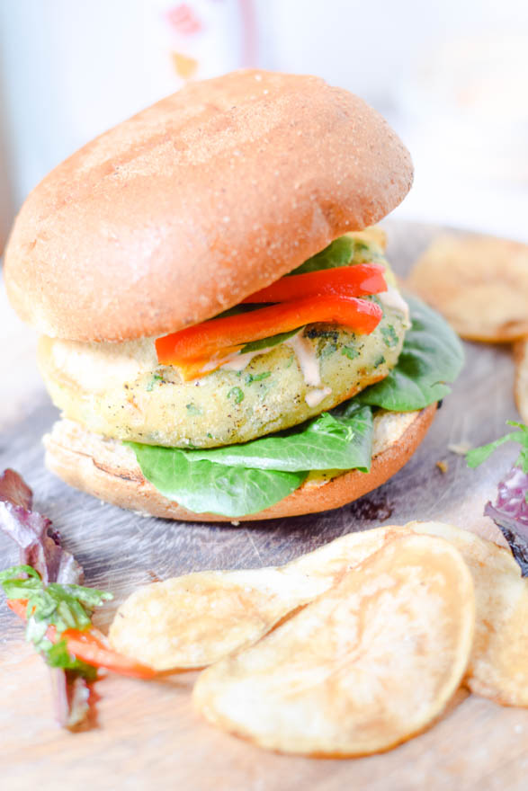 Soya and cottage cheese burgers