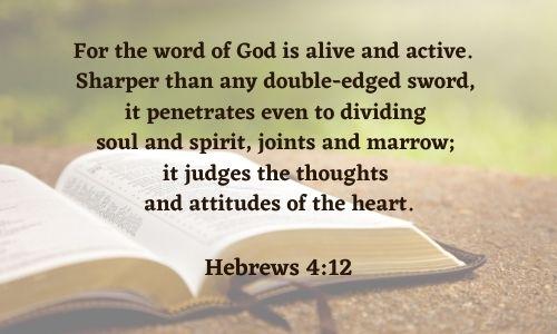 open bible2