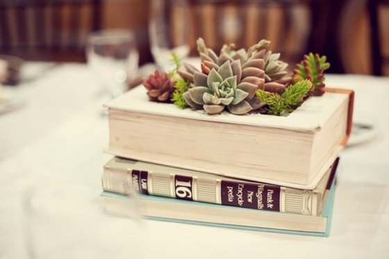 Plant succulents directly inside books for a vintage style vibe