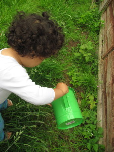 baby watering the plants