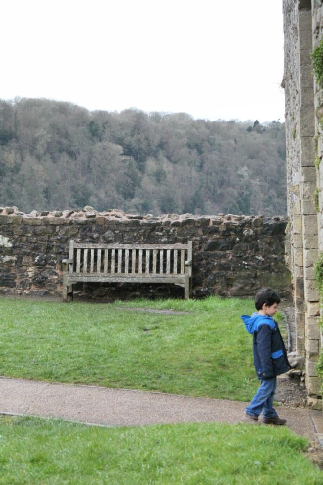 view from chepstow castle