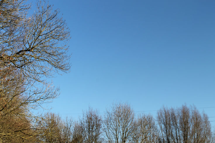 blue sky at denham country park