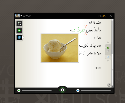 rosetta stone arabic showing mistakes