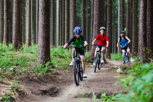 Family mountain biking routes
