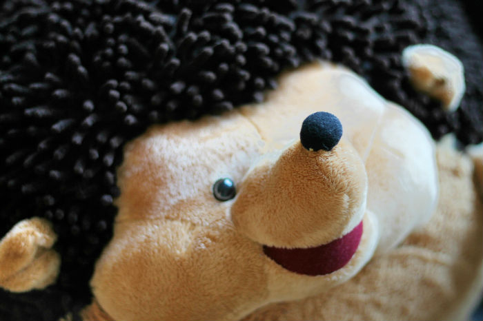 squishables hedgehog design
