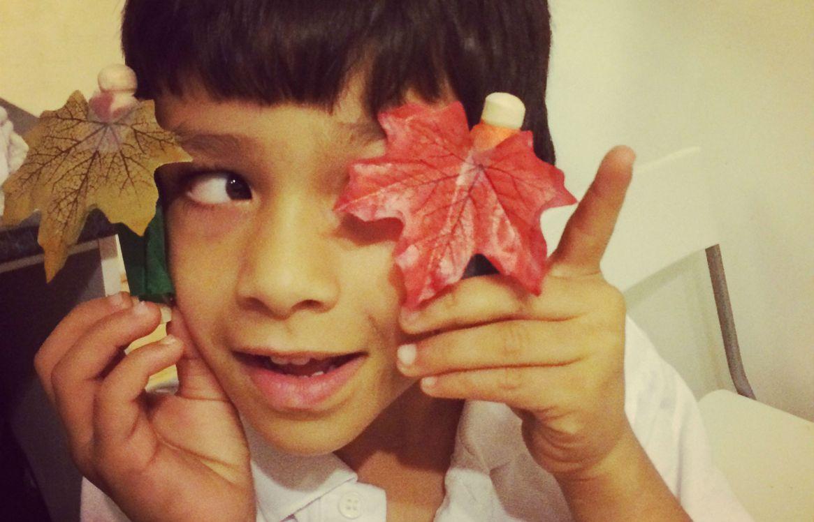 autumn leaf peg dolls
