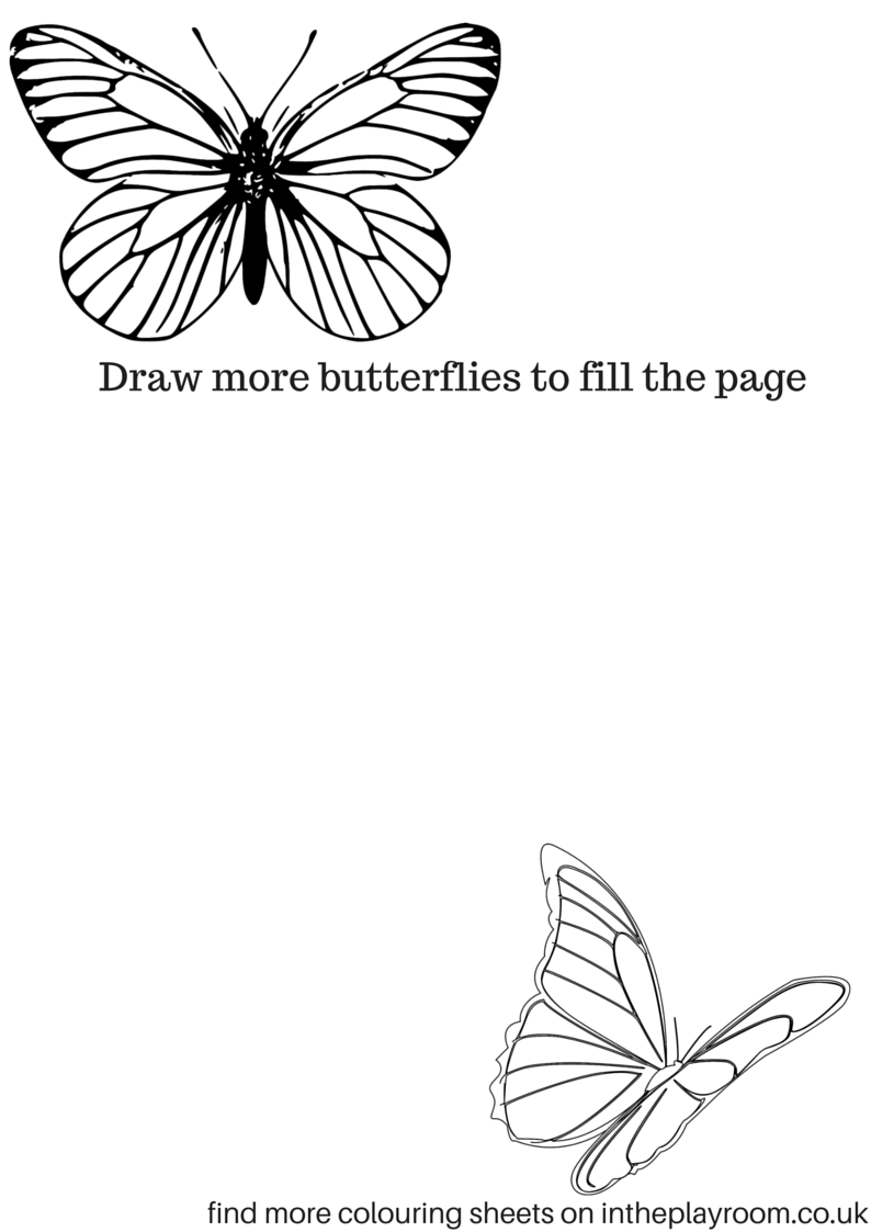butterflies drawing prompt page