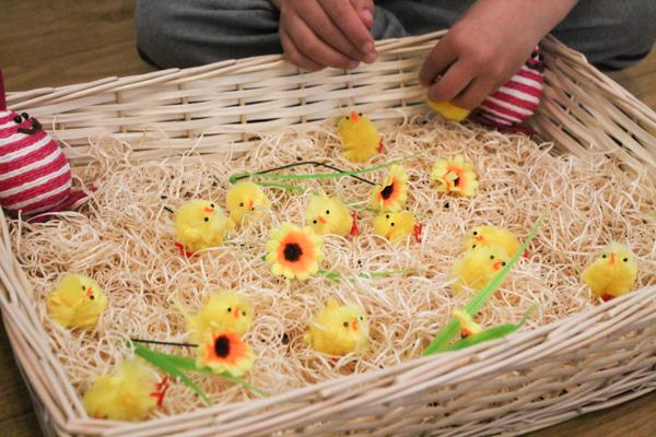 spring chick sensory bin