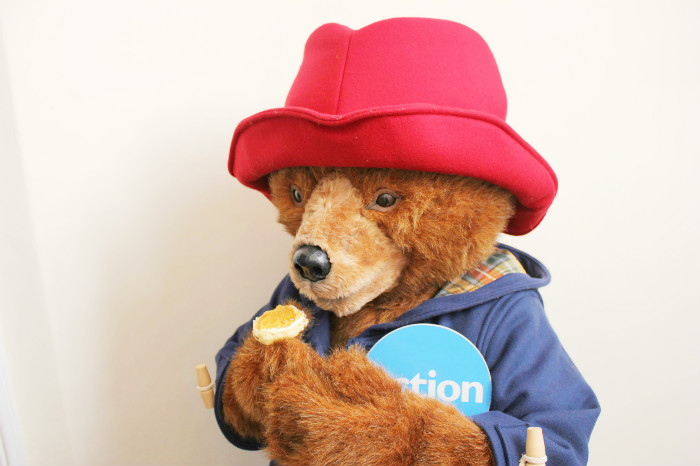 paddington with marmalade for action medical research cream teas