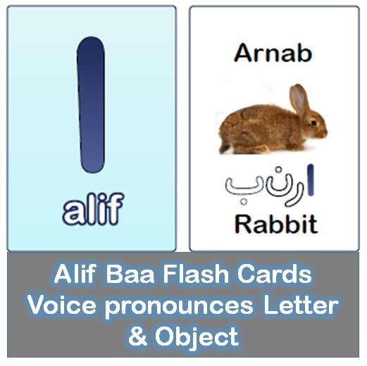 Arabic alphabet flashcards in alif baa app