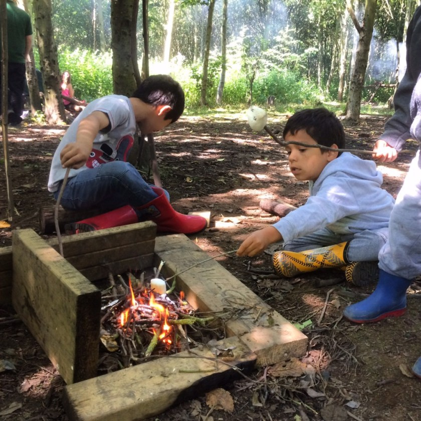 bushcraft survival making a camp fire with kids, roasting marshmallows