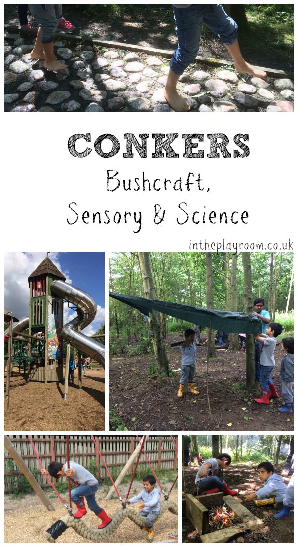 Bushcraft, barefoot walk and discovery science centre at conkers in Leicestershire