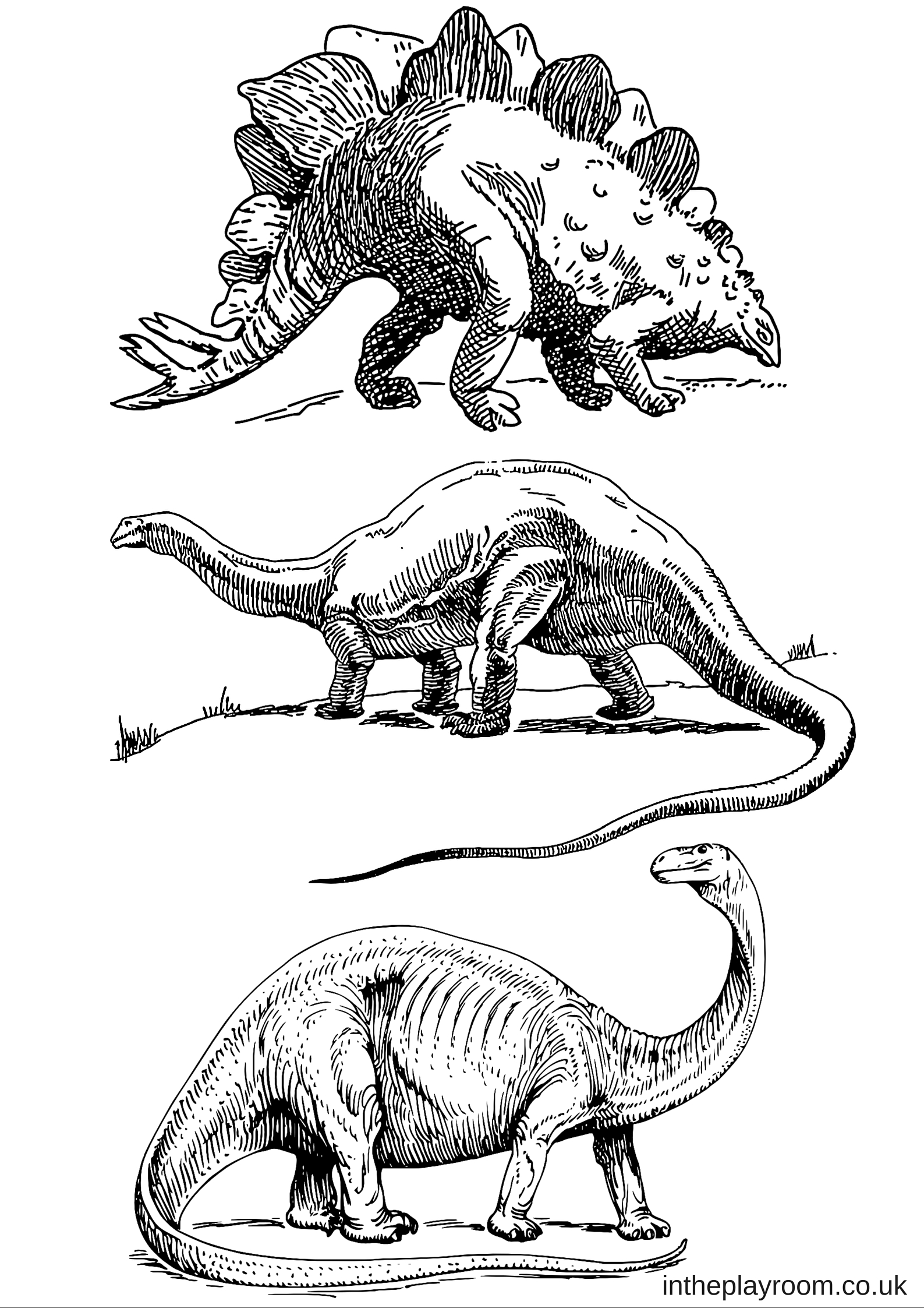 Set of 5 dinosaur colouring pages to print for kids