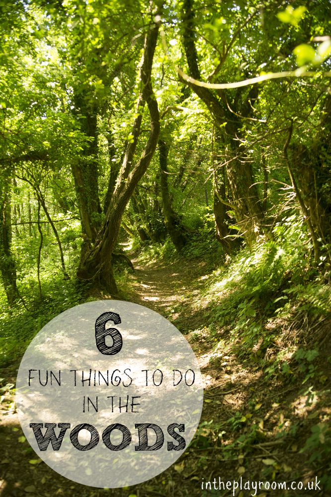 6 fun things to do in the woods