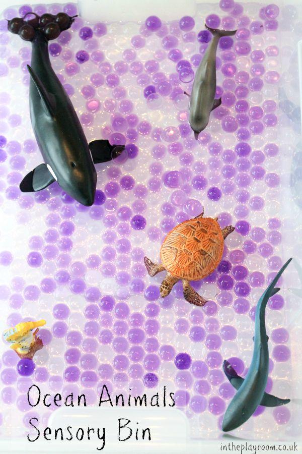 Ocean animals sensory bin. Super easy idea, fun way to learn about ocean animals