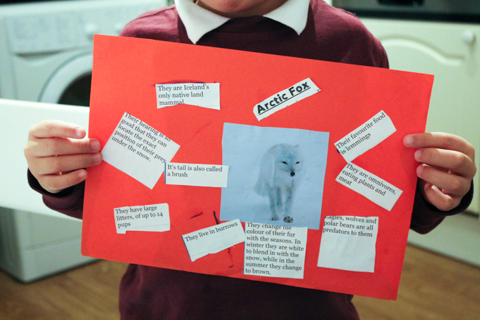 cutting and sticking arctic animals factfile for the arctic fox