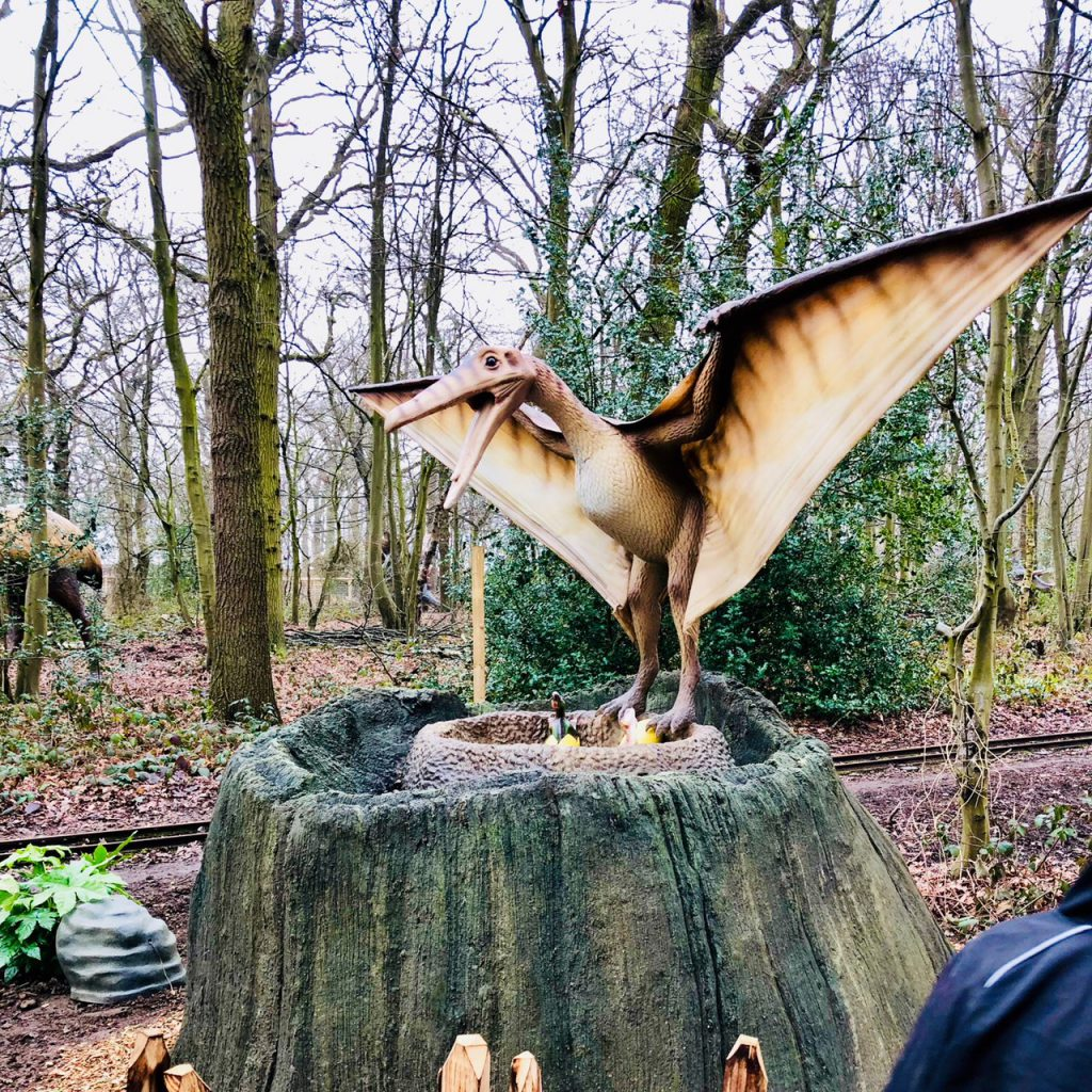 Pteranodon World of Dinosaurs at Paradise Wildlife Park