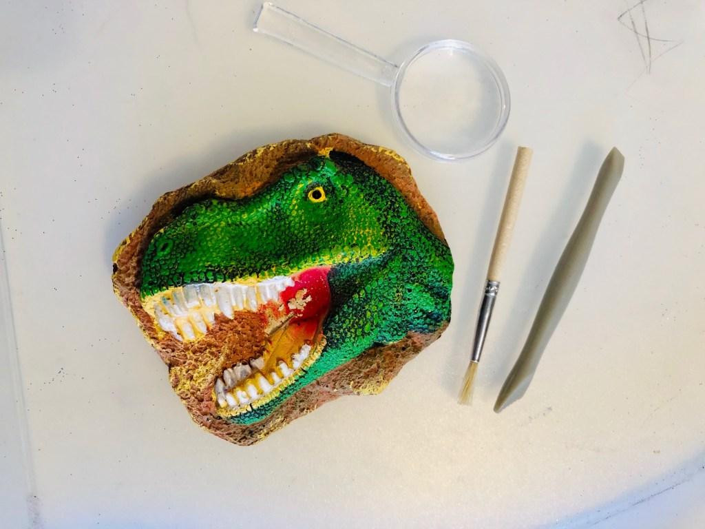 National Geographic STEM Sets: Dinosaur and Bug Dig Kits