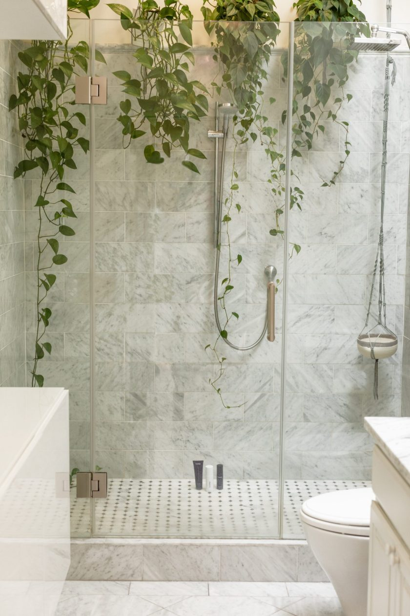 walk in shower with plants, and rainforest shower head