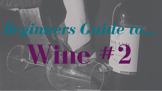 Beginners Guide to Wine - In The Pursuit of More