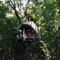 Les cabanes du Bois Landry