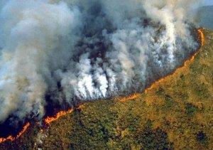 حرائق جديدة تجتاح غابات الأمازون