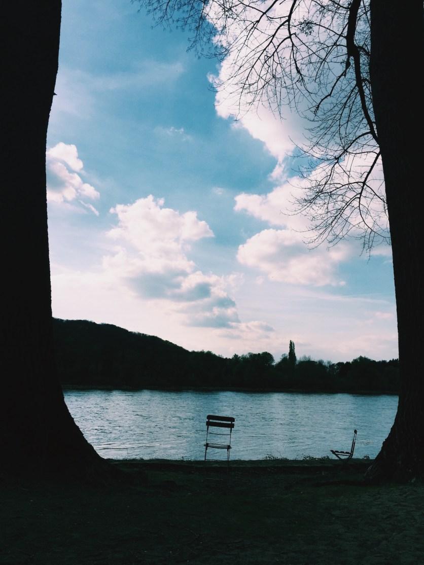 Rhein-Blick