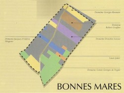 chambolle_musigny_bonnes_mares915_map_01