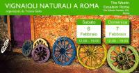 vignaioli naturali a roma 2016