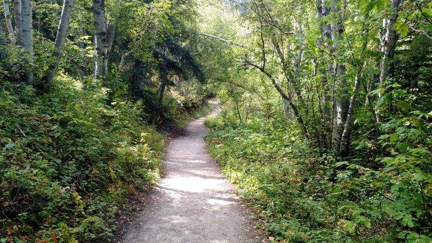 Roughlock Falls Nature Trail
