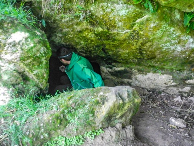 Clifden Cave ♦ - The Intrepid Life