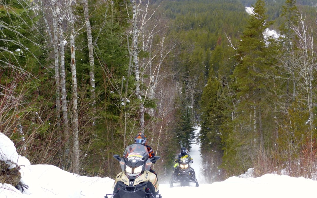 Algoma North Shore Loop Snowmobile Tour