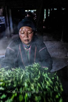 Bulang woman roasting freshly picked tea leaves over a hot roasting wok