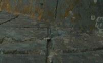двуборозчатый след пропила древней дисковой пилы