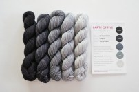 party-of-5-sock-yarn-graphite