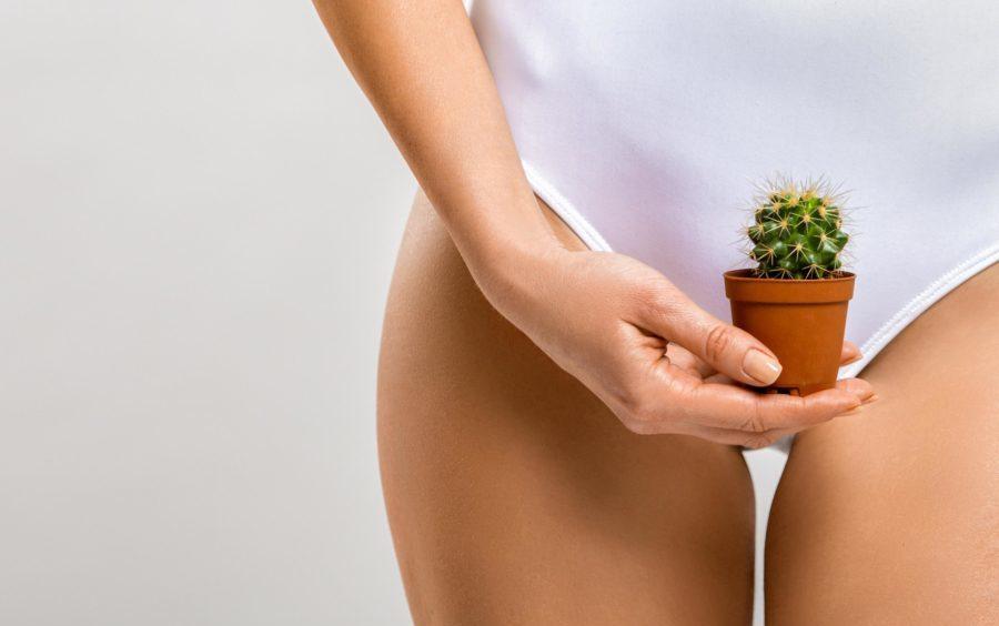 Отсутствие секса