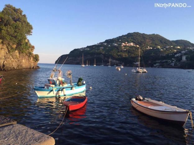 Barche di pescatori a Ischia