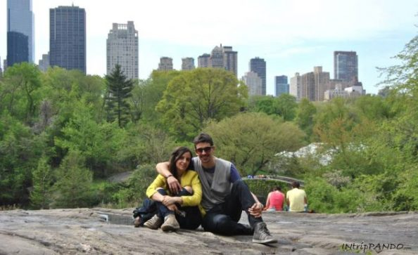 Central Park con skyline di Manhattan