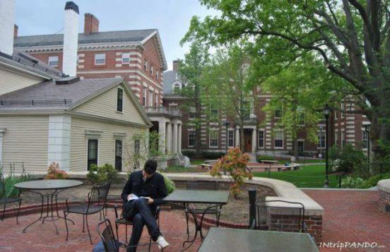 Giardini interni all'università di Harvard