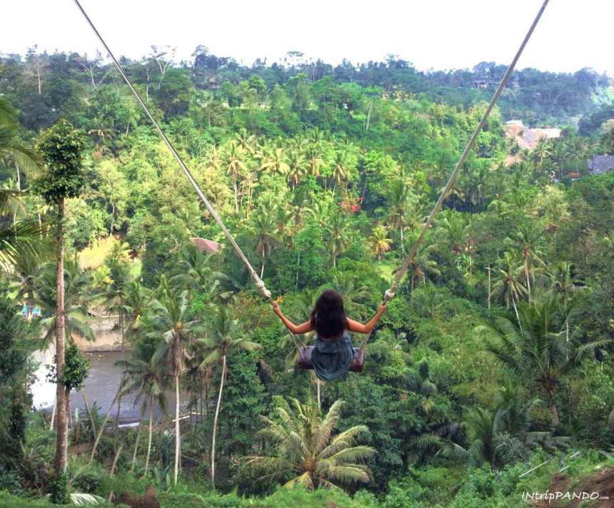 Altalena nella giungla a bali come dove e quanto costa for Come costruire una palestra nella giungla